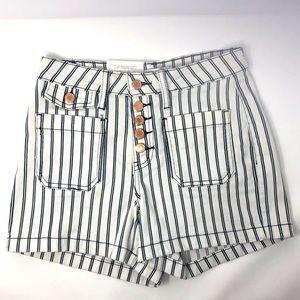 Judy Blue Pinstripe Pocket Shorts in Medium